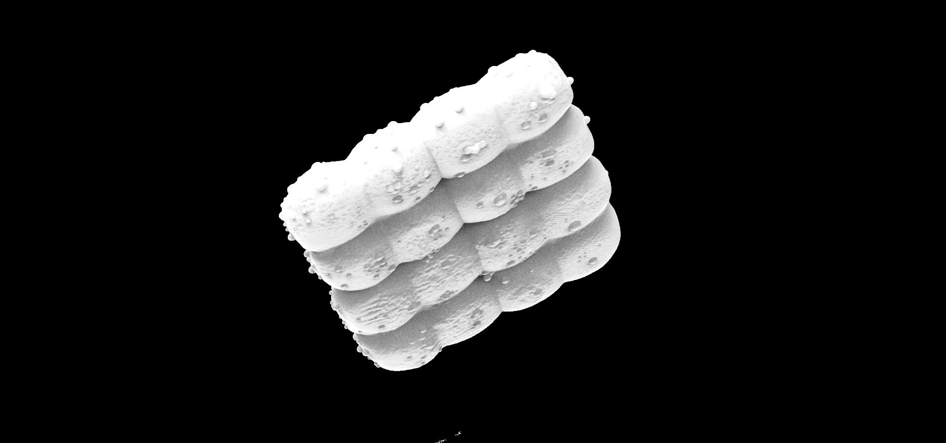 Deinococcus.99