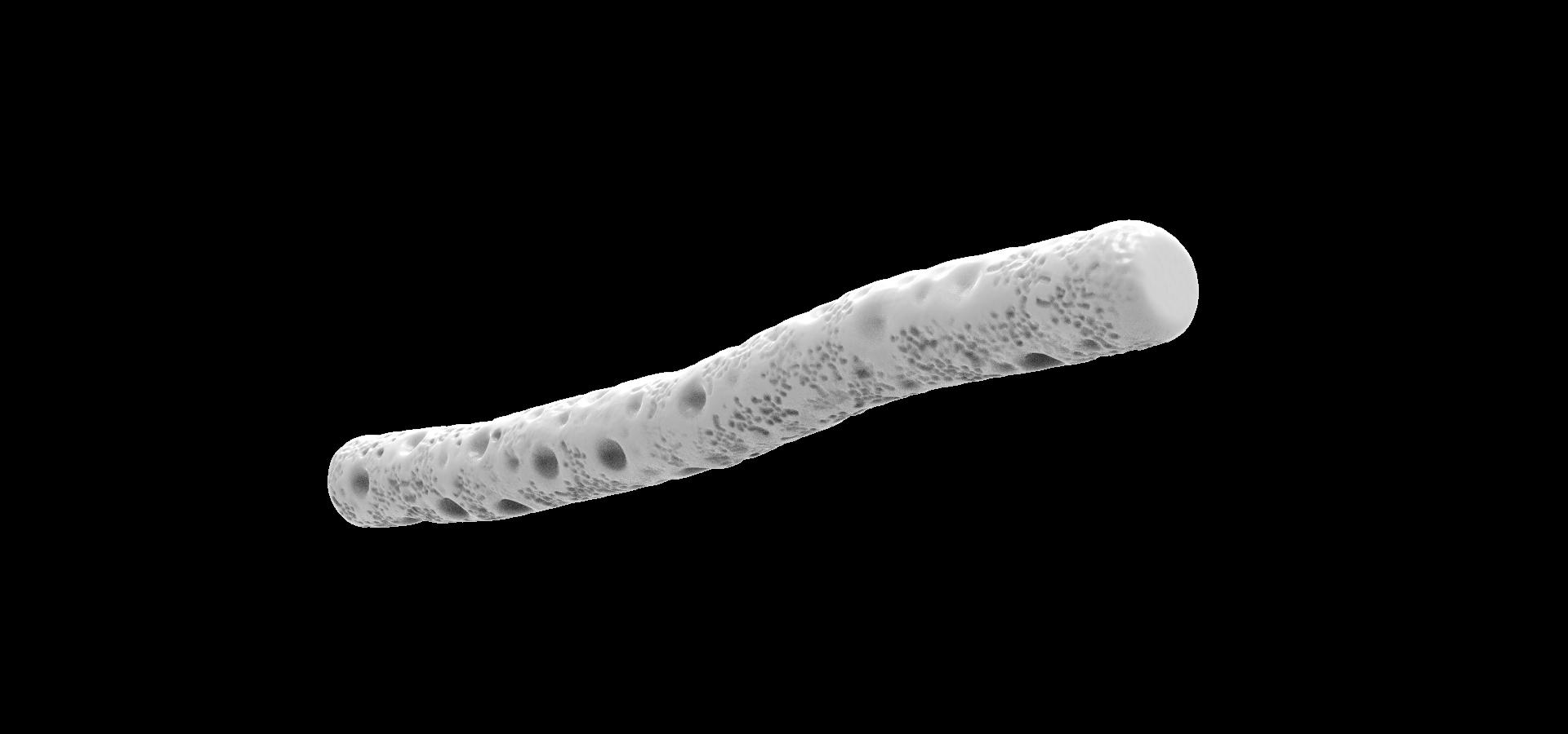 Pyrobaculum.30